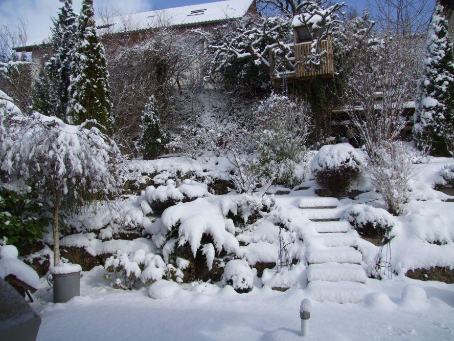 Работа в саду зимой